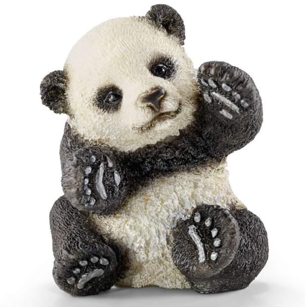 Panda Junges, spielend