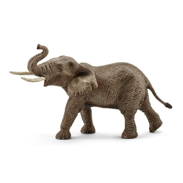 Afrikanischer Elefantenbulle