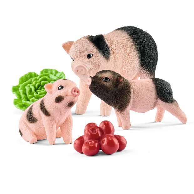 Mini-Schwein Mutter und Ferkel
