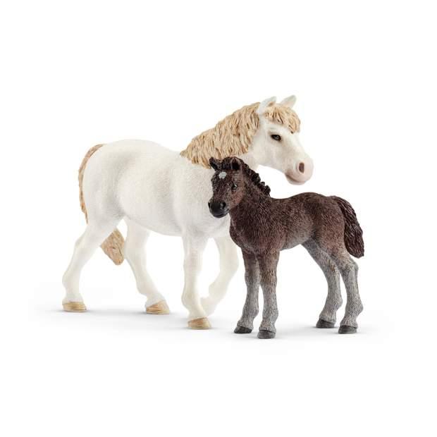 Pony Stute und Fohlen