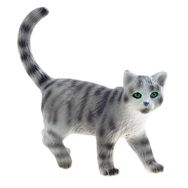 Farm - Katze Minka