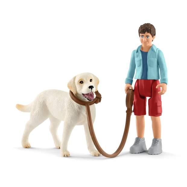 Spaziergang mit Labrador Retriever