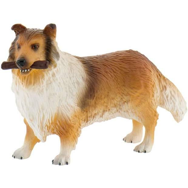 Farm - Langhaarcollie Lassie