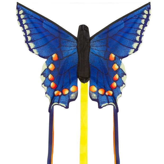 Butterfly Kite Swallowtail Blue