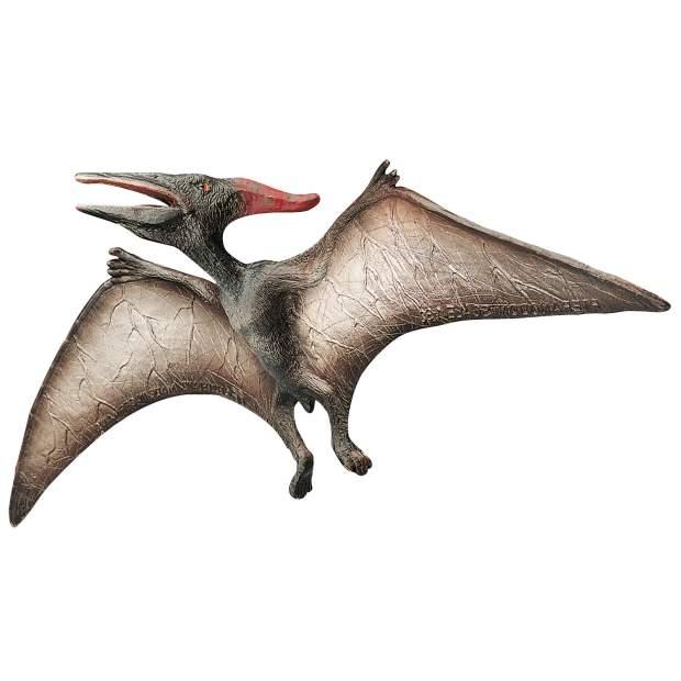 Dino - Pteranodon Museum Line