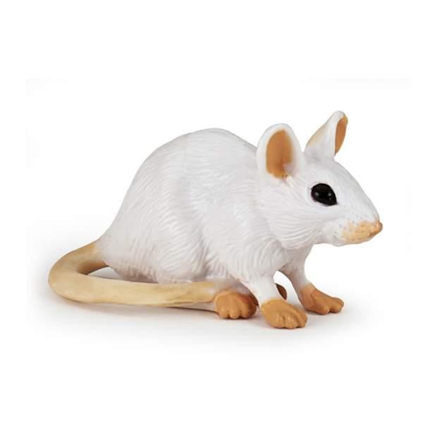 Weisse Maus