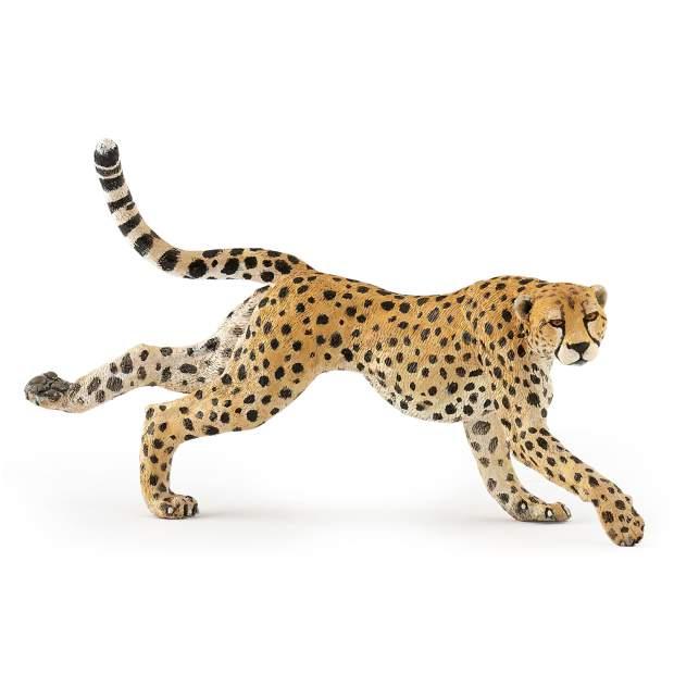 Laufende Gepardin