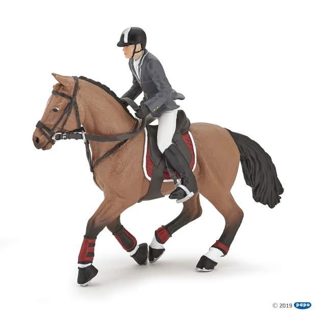 Wettkampf Pferd und Reiter