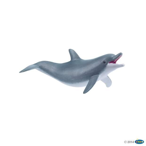 Spielender Delphin
