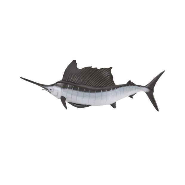 Fächerfisch