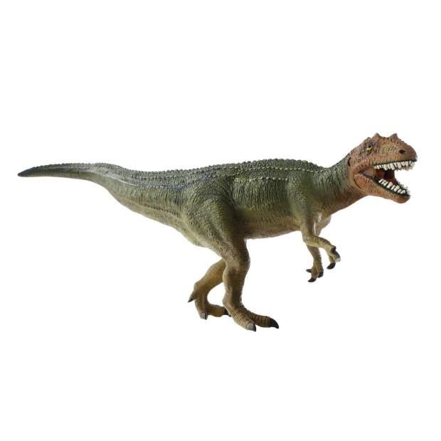 Dino - Giganotosaurus Museum Line