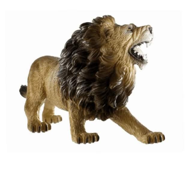 Wild - Löwe