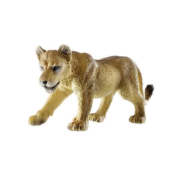 Wild - Löwin